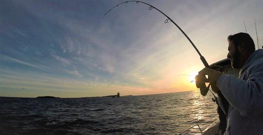Copy of morning fishing